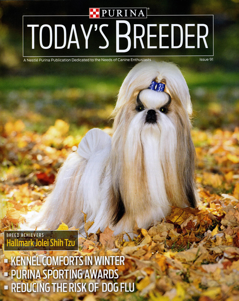 Dog portrait for Purina Today's Breeder magazine cover